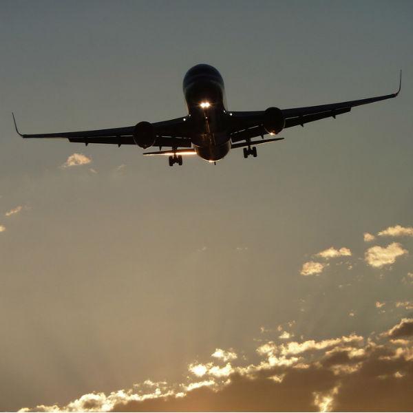 pelle in aereo
