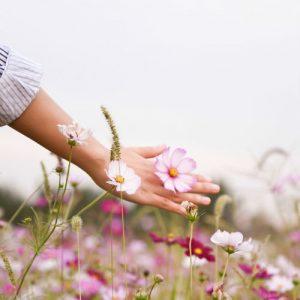 Pelle delle mani