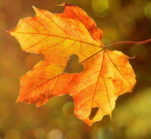 Esfoliazione: trattamenti d'autunno