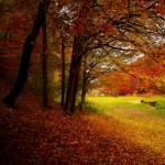 eczema e autunno