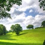 natura e salute