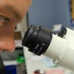 ricerca-scientifica
