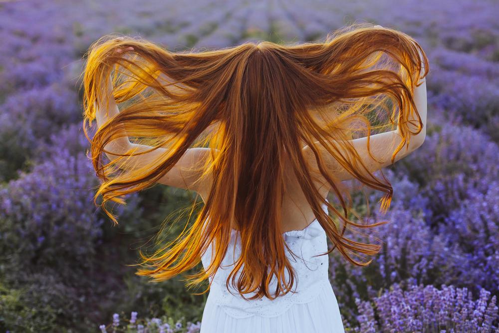 Quali erbe usare per rinforzare i capelli? | Prof ...