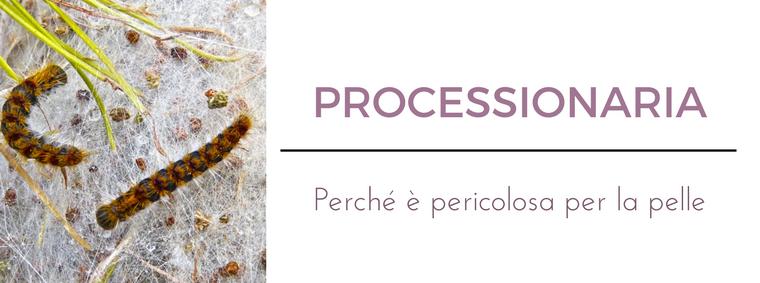 Processionaria: i migliori consigli del Dermatologo Antonino Di Pietro dell'Istituto Dermoclinico Vita Cutis di Milano