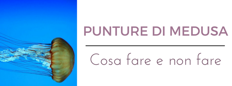Punture di medusa: : i migliori consigli del Dermatologo Antonino Di Pietro dell'Istituto Dermoclinico Vita Cutis di Milano