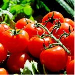 proprietà dei pomodori