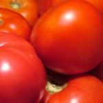 proprietà pomodori